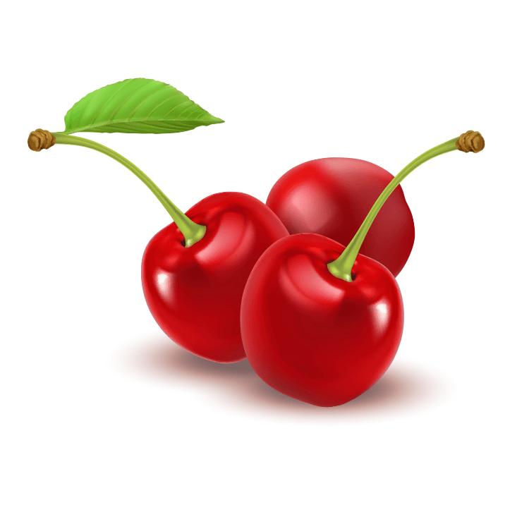 Hail Net Cherries