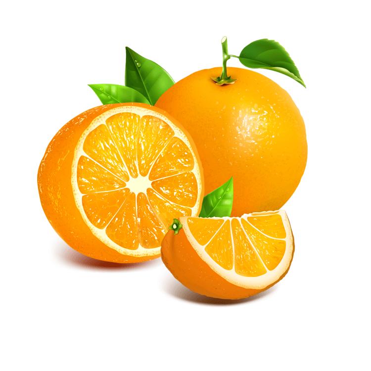 Hail Net Oranges