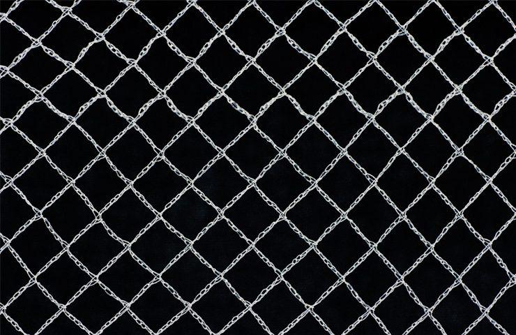 bird-net-3