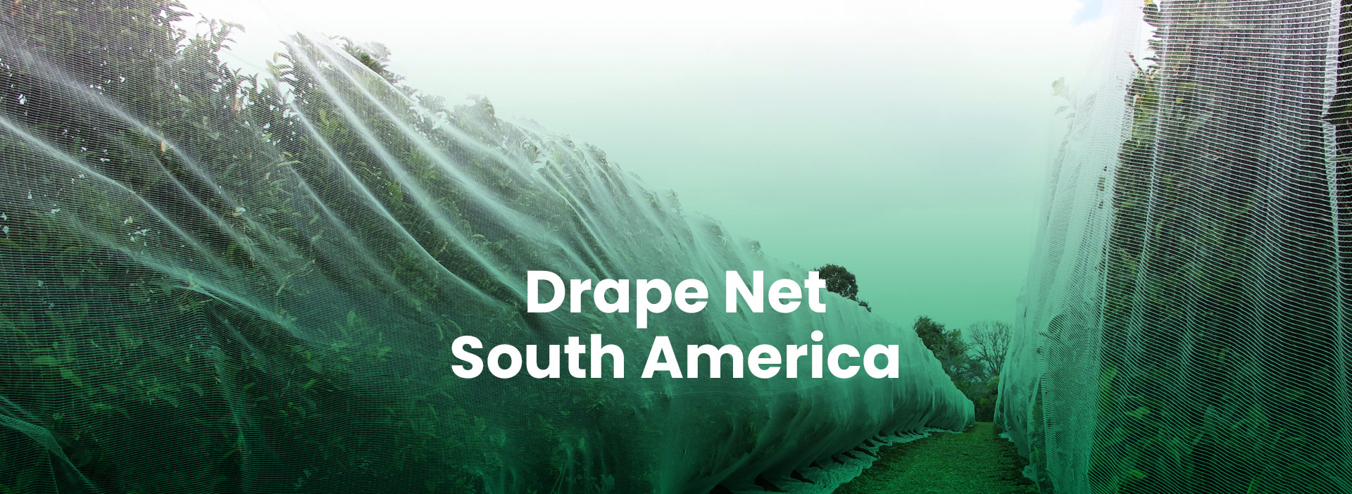 Drape Net South America