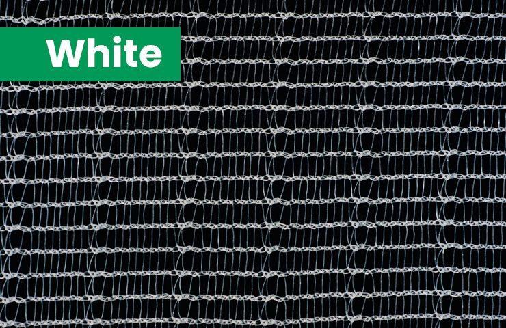 white-740×480